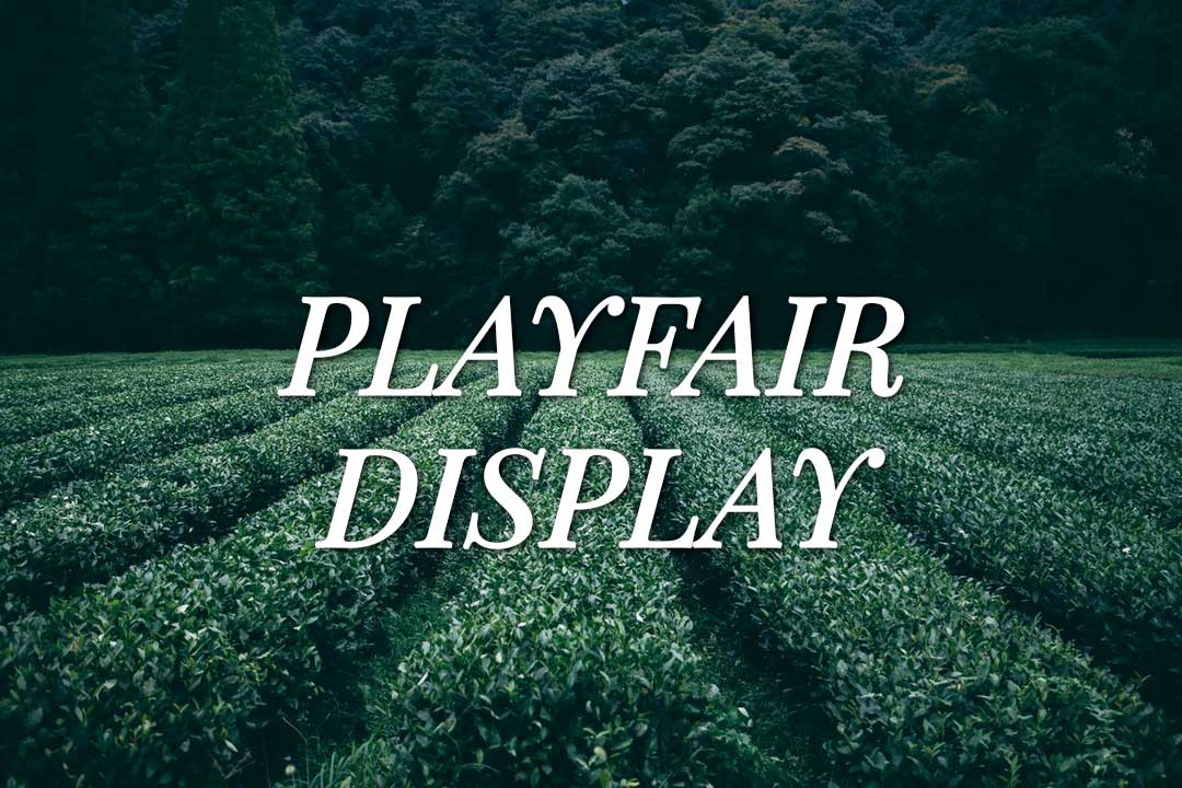 Playfair Display Web Font